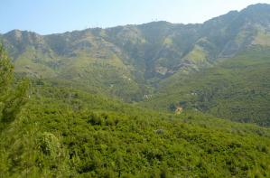 The mountains of Thassos